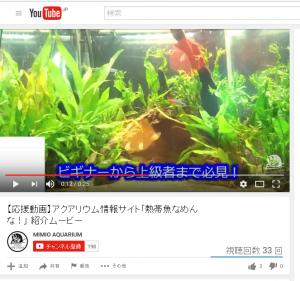 熱帯魚なめんなPV