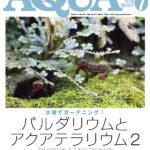 中型、小型ナマズの種類、写真&飼育情報満載!アクアライフ7月号は激アツだ!