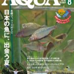 日本の淡水魚の採集、飼育を楽しむなら。アクアライフ40周年号レビュー!