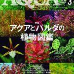 「ぷれ子×萌菜」対談!お題は、アクアライフ2020年3月号レビュー!