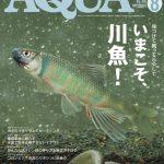 アクアライフ2020年8月号レビュー!図鑑付き日淡特集!